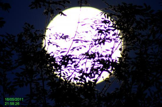 Soir de pleine lune Mai 2011